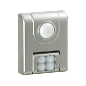 Fulcrum Motion Sensor LED Light