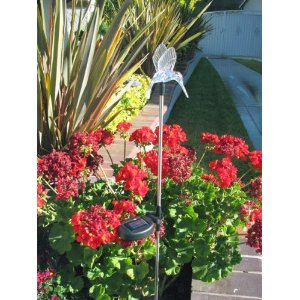 Solar Powered Hummingbird Garden Stake Light. Color changing LED light.