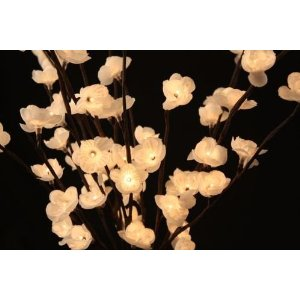 The Light Garden WTFL96 Lighted White Plum Tree with 96 Bulbs, 40-Inch Tall